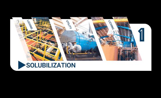 solubilization tal zinc